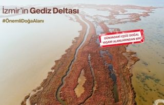 Bilim insanlarından Gediz Deltası için çağrı