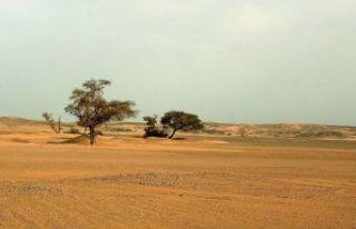 Sahra Çölü'nde bilinmeyen bir uygarlığın izlerine...