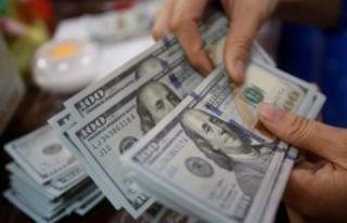 Dolar yine yükseldi