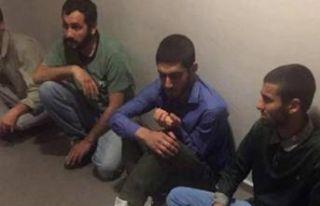 MİT'ten PKK'ya darbe!