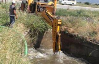 İzmir'de tarlaları su bastı