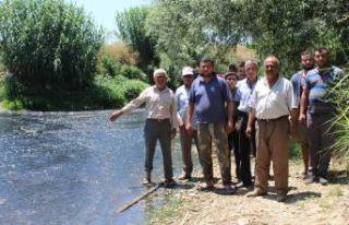 Çiftçilerden Küçük Menderes'te 'kirlilik'...