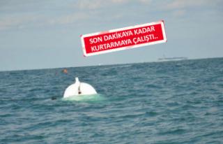 Urla'da gemisini terk etmeyen kaptan canından...