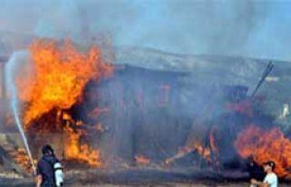 Muğla'da  'Orman Yangını'