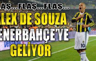 Alex Fenerbahçe'ye Geliyor