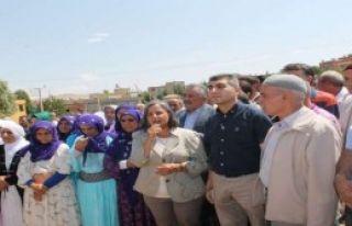 BDP'den Barış Çağrısı