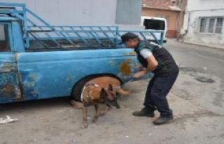 2 Bin Polisle 'Huzur Operasyonu'