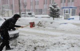 Hakkari ve Bitlis'te Kar Etkili Oluyor