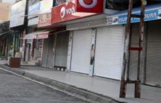 İdil'de Polise Saldırı