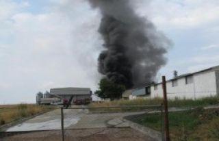 Kemalpaşa'da Tavuk Çiftliğinde Yangın