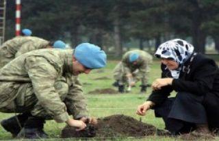 Gaziler Komandolarla Fidan Dikti