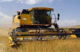 Tahıl ve Meyve Üretimi Arttı!