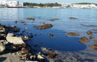 Denizi kirleten tesislere 2 yılda 12 milyon lira ceza