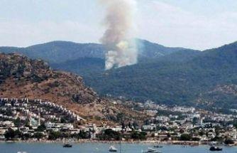 Bodrum'da korkutan orman yangını