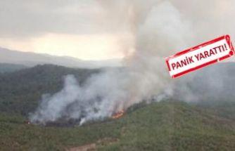 Muğla'da korkutan yangın!