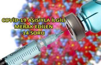 Covid-19 aşısıyla ilgili merak edilen 14 soru