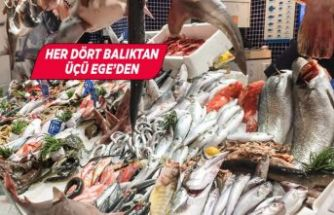 Egeli balıkçılar 2023 için 1 milyar dolar ihracat hedefi koydu
