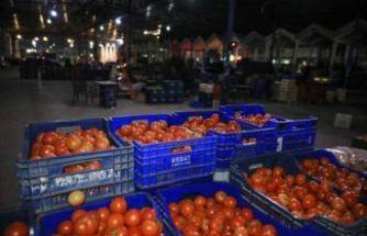Sebze ve meyve neden pahalı?