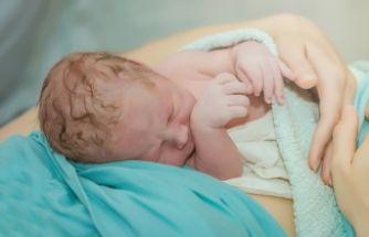 Plasenta, Göbek Kordonu ve Lotus Doğum Nedir?