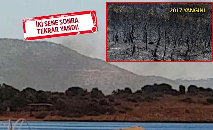 Gümüldür'de orman yangını, ev ve oteller boşaltıldı