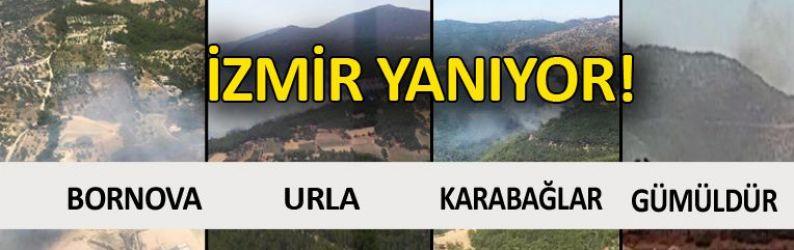 İzmir'de 4 ayrı yerde yangın