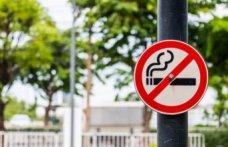 İçki ve sigara içenler dev şirketleri solladı