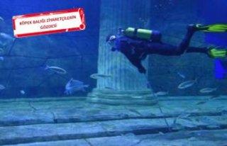 İzmir'e 'okyanus' geldi