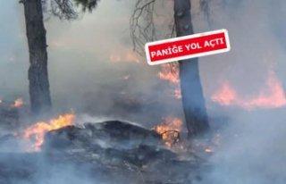İzmir'de orman yangını! Çevre illerden destek...