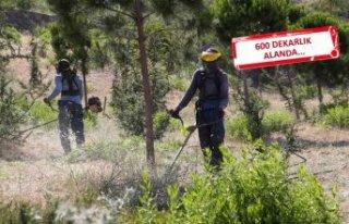 Karşıyaka'da yangın önlemi