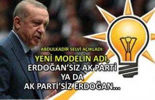 Selvi açıkladı: Yeni modelin adı, Erdoğan'sız...