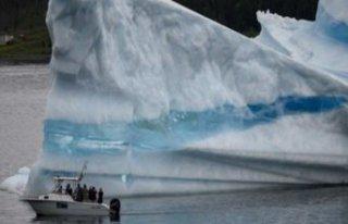 """BM'den iklim değişikliği için """"acil""""..."""
