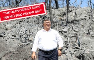 CHP'li Sındır: Bakan'ın derdi orman değil,...