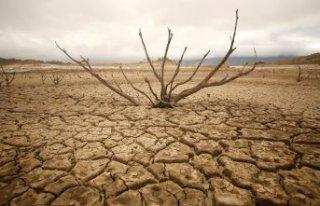 İklim krizi: Türkiye'de kuraklık kapıda