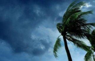 Kuvvetli rüzgar uyarısı! O illerde yaşayanlar...