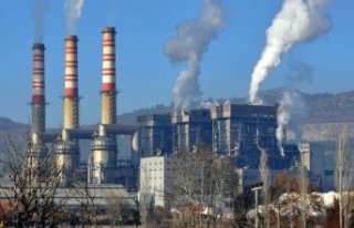 Termik santraller Muğlalıları canından ediyor:...