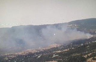 Foça'da makilik alanda yangın!