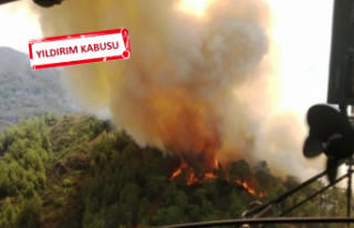 İzmir'de 6 noktada birden orman yangını