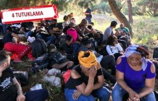 İzmir'de göçmen operasyonu