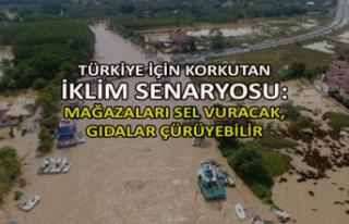 Türkiye için korkutan iklim senaryosu: Mağazaları...