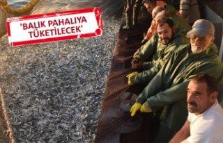 Egeli balıkçılar, ışıklı avlanmada kendilerinin...
