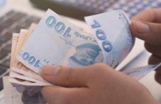 Pekcan: 3 milyar 754 milyon lira destek vermeyi öngörüyoruz