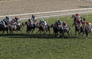 Varlık Fonu'ndan önemli at yarışı açıklaması