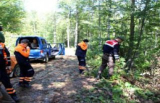 83 Yaşındaki Alzheimer Hastası Ormanda Aranıyor