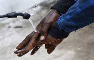 IMF de Ebola Virüsüne Savaş Açtı
