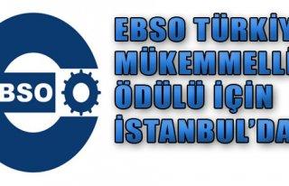 'Hedef Türkiye Mükemmelik Ödülü'