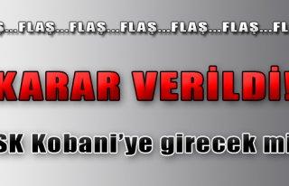 TSK Kobani'ye Girecek mi?