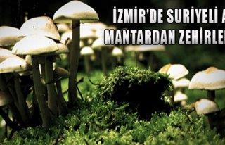 Suriyeliler Mantardan Zehirlendi!