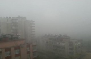 Adana'da Fırtına Yıkıp Geçti