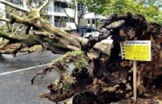 Avustralya'da Fırtına