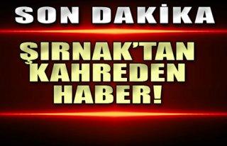 Şırnak'tan Acı Haber: 2 Şehit 4 Yaralı